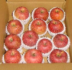 りんご5kg
